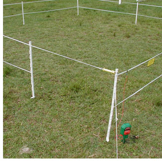 ELECTRIC FENCING FOR DOGS | EHOW - EHOW | HOW TO